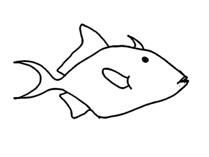 large oval fish